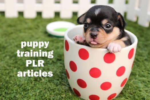 Dog PLR Articles on Potty Training Your Puppy   Wordfeeder